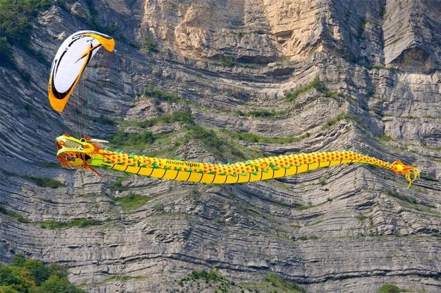 dragon-volant